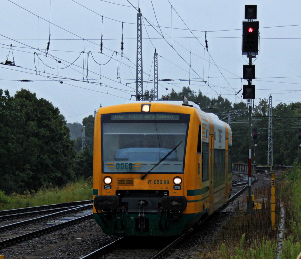 VT 650.88 der ODEG am 22.07.11 in Neustrelitz