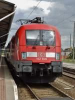 br-6182-es-64-u2-/283605/182-008-in-cottbus-30072013 182 008 in Cottbus 30.07.2013.