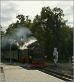 RUBB/97314/die-ruebb-99-1761-8-dampft-in Die RüBB 99 1761-8 dampft in Baabe ein.  19.09.2010