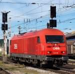 Eigene Bilder/160552/so-gefaellt-er-mir-am-besten So gefällt er mir am Besten !! 2016 069 rollte alleine in den Salzburger Hbf am 11.8.11 an einen City Shuttle Wagenpark.