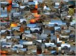Bahnbilder der etwas anderen Art/122503/bilder-bilder-bilder Bilder, Bilder, Bilder...