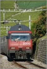 re-460-re-4-4-vi/101407/bild-3--und-faehrt-dem Bild 3: ... und fährt dem Fotografen fast ist Teleobjektiv. Zwischen Bosseire und Grandvaux am 3. Okt 2010