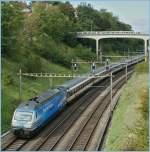 re-460-re-4-4-vi/119905/re-460-024-3-zugkraft-aargau-mit Re 460 024-3 'Zugkraft Aargau' mit einem IR bei Lausanne.  28.09.2010