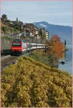 re-460-re-4-4-vi/122943/re-460-036-7-mit-einem-ir Re 460 036-7 mit einem IR nach Genève Aéroport bei St-Saphorin am 04.11.2010
