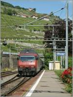 re-460-re-4-4-vi/145894/sbb-re-460-117-5-in-rivaz SBB Re 460 117-5 in Rivaz. 