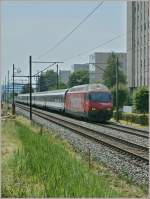 re-460-re-4-4-vi/83377/sbb-re-460-102-7-historic-mit SBB RE 460 102-7 'Historic' mit IR nach Konstanz bei Grenchen am 10. Juli 2010.