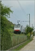 re-486-traxx-f140-ms/283643/die-186-108-bei-ligerz23-juli Die 186 108 bei Ligerz. 23. Juli 2013