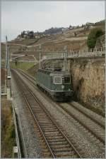 re-620-re-6-6/117105/eine-der-letzten-gruenen-re-66 Eine der letzten grünen Re 6/6: Re 6/6 11663 bei Rivaz am 20. Jan. 2011.