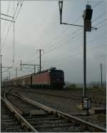 re-620-re-6-6/165661/sbb-re-66-mit-einem-gueterzug SBB Re 6/6 mit einem Güterzug in Ependes. 31.2011