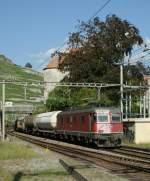 re-620-re-6-6/76545/bei-einem-besonders-fotogenen-sonnestand-faehrt Bei einem besonders fotogenen Sonnestand fährt die Re 6/6 11609 mit einem Güterzug durch die Station Rivaz. 4. Aug. 2009