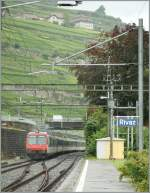 560-npz-und-domino/152828/ein-npz-nach-villeneuve-verlaesst-rivaz Ein NPZ nach Villeneuve verlässt Rivaz am 16 Aug. 2010 bei einem interessanten Fotowetter.