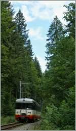 trn-cmn/91550/kleiner-zug-im-grossen-dunklen-wald Kleiner Zug im grossen dunklen Wald: cmn BDe 4/4 N° 5 bei Les Frêtes am 19. August 2010.