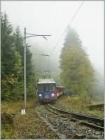 zb-zentralbahn/100518/auch-schlechtes-wetter-macht-hin-und Auch 'schlechtes Wetter' macht hin und wieder ein gutes oder zumindest interessantes Bild...  IR (!)3669 von Engelberg nach Luzern bei Grünenwald am 18. Oktober 2010.
